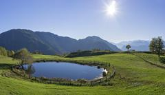 Stock Photo of Pond at the Zisloner Alm Truden Trodena TrentinoAlto Adige Province of South