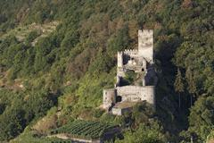 Hinterhaus castle ruins Spitz Wachau Waldviertel Lower Austria Austria Europe Stock Photos