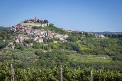 Idyllic village on hilltop with Venetian fortress grapevines in front Motovun Stock Photos