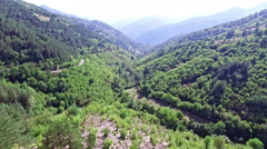 Flying Over a Trees in a Valley - stock footage