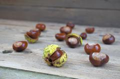 Chestnuts on a wooden table, autumn decorations, October - stock photo
