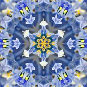 Blue Concentric Flower Center. Mandala Kaleidoscopic design Stock Photos