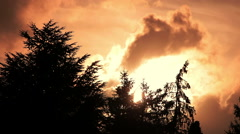 Gold burning sunset with clouds moving behind the trees: amazing sunset Stock Footage