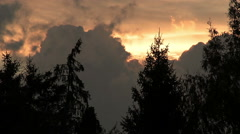 dark clouds moving behind the trees at sunset - stock footage