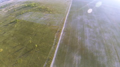 POV flight like  eyes of  bird over field with trees .Aerial  Stock Footage