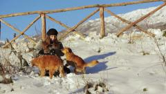 Young happy woman playing with snow balls and two dogs in the snow: winter time Stock Footage
