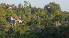 Guesthouses between palm trees on hill slope,Ubud,Bali,Indonesia Stock Footage