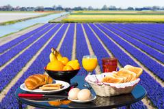 Table with food and drink near flowers field - stock photo