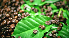 Coffee beans and coffee tree branch. coffee beans fall. Full HD 1080p Stock Footage