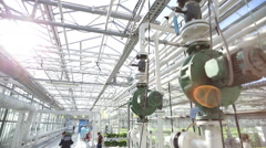 Employees of greenhouse plants are transported on a hand cart Stock Footage