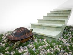 Moving turtle wants to climb on the stairs concept background Stock Illustration