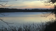 Jolly Ann Lake evening - stock footage