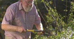 Gardening grandfather senior retired elderly mature adult retirement age - stock footage