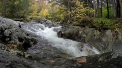 River with autumn colors Stock Footage