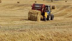 Tractor working on the field makes haystacks Stock Footage
