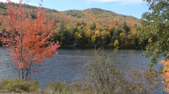 Fall foliage over water in the Adirondacks foliage Stock Footage