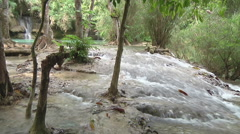 Stream  in the jungle, Luang Prabang, Laos Stock Footage