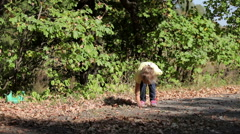 Little girl collects acorns in the forest Stock Footage
