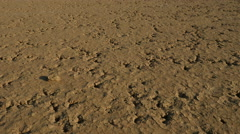 A pan of dead soil, cracked earth Stock Footage
