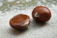 Duo of chestnuts Stock Photos