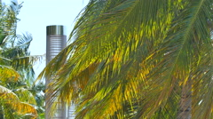 Miami Beach scene Stock Footage
