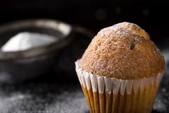 Sugar powdered madeleine Stock Photos