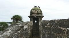 Stock Video Footage of Pigeons Sitting on Oldest Fort Castillo de San Marcos in St. Augustine Florida
