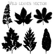 Silhouettes of wild flowers and leaves vector - stock illustration