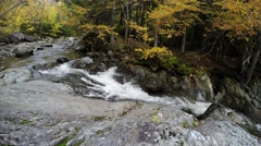 Autumn time lapse with river and yellow foliage colors a Stock Footage