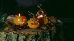 Stock Video Footage of Hand places a Halloween pumpkin over a tree trunk with pumpkins decoration