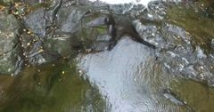Buttermilk Falls Waterfall Aerial. Stock Footage