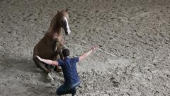 Man trust to horse, horse training, horse show Stock Footage