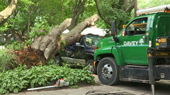 Stock Video Footage of Severe thunderstorm damage with car crushed by tree