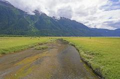 Tidal Creek Heading into an Ocean Fjord - stock photo