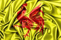 Stock Photo of Satin flag - flag of Wallonia