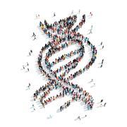 Stock Illustration of people shape  DNA cartoon