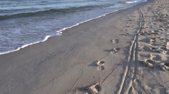 Footprints by the sea on sunny day Stock Footage