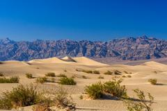 Mesquite Flat sand dunes, near Stovepipe Wells Death Valley NP Stock Photos