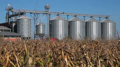 Grain Silos In Corn Field - stock footage