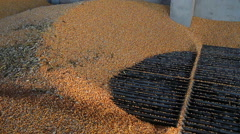 Grain Being Loaded into the Silo Stock Footage