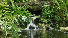 Stock Video Footage of Pond with Small Waterfall, Lily Pads and Vegetation, 4K