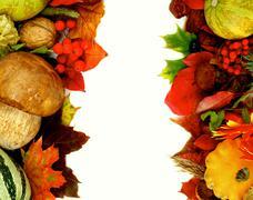 Autumn Harvest Frames - stock photo