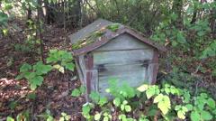 Old beehive in derelict farm garden Stock Footage