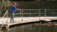Feeding the ducks with bread. Stock Footage