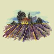 Watercolor landscape with blooming lavender - stock illustration