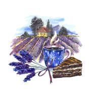 Watercolor landscape with blooming violet lavender, cup of tea a - stock illustration