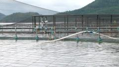 Cage for fish farming. Stock Footage