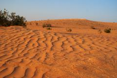 dry sand desert in middle east - stock photo