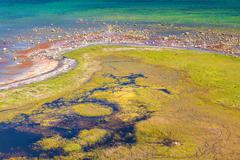Wetlands on the south side of Oland, Sweden Stock Photos