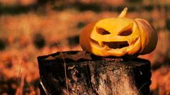 Jack o lantern carved pumpkin halloween on a stump - stock footage